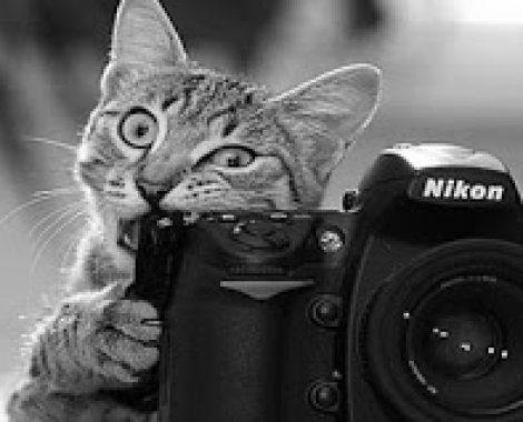 passione-macchina-fotografica